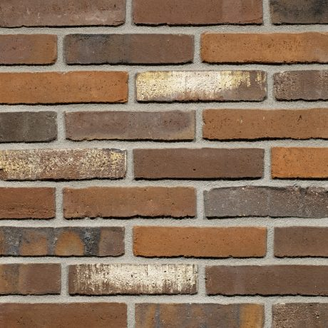 Productshot of the Maestra WS WF brick
