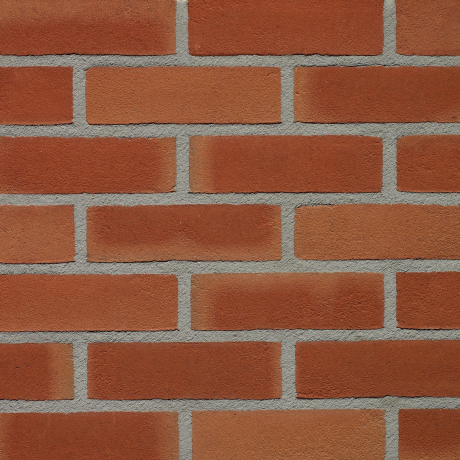 Productshot of the Aarderood Gereduceerd VB EF brick