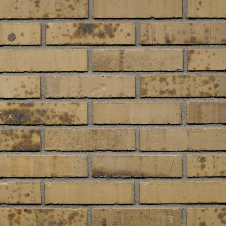 Productshot of the Putty Multi Gesinterd Fuss SP WF brick