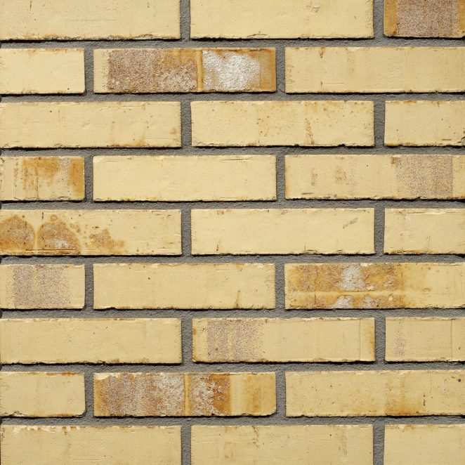 Productshot of the Sussex Multi Gesinterd Fuss SP WF brick