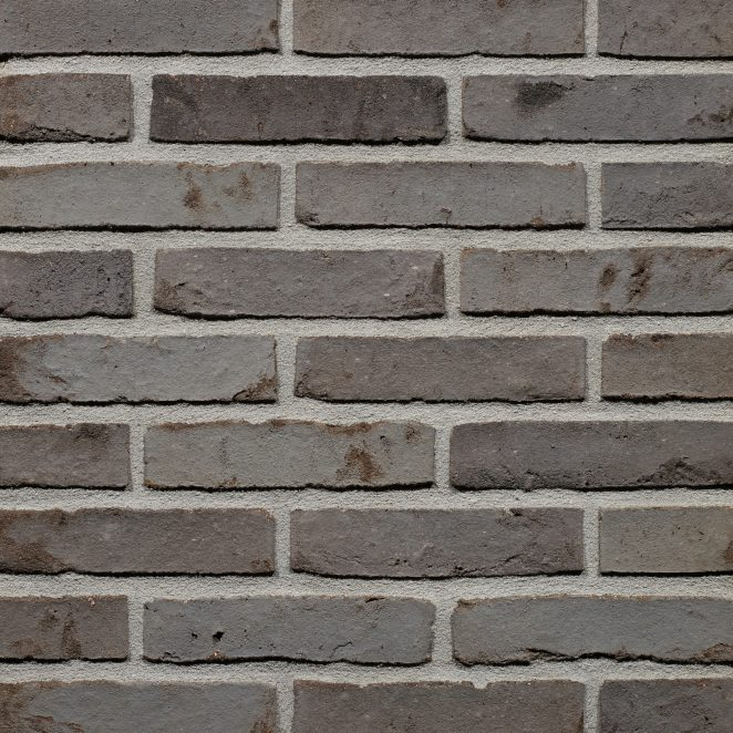 Productshot of the Darwin Falls Multi WS WF brick